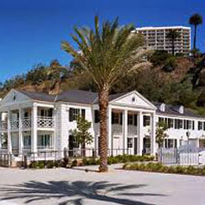 Historical Palm Tree Marion Davies Beach House